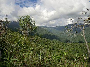 Cordillera de la Costa a su paso por el Municipio Zamora%2C Estado Miranda