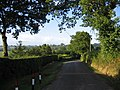 Country Lane near Cheriton Bishop - geograph.org.uk - 380534.jpg
