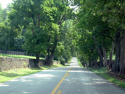 Narrow country roads bounded by stone and wood plank fences are a feature in the Kentucky Bluegrass region. Country road in Kentucky.jpg