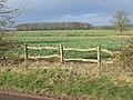 Countryside north of Thurlaston Lane - geograph.org.uk - 677953.jpg