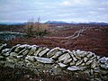 Creag nam Mial W ridge - geograph.org.uk - 1108494.jpg