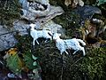 Crib in Via Bronia (Galletto,Vaiano) 10.jpg