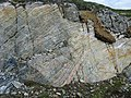 Cross-section of rock - geograph.org.uk - 500306.jpg