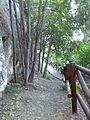 Cuevas de Lituergo K11.jpg