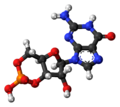 Cyclic-guanosine-monophosphate-3D-balls.png