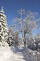 Czerniawa Zdrój - ul. Górzysta zimą - panoramio (2).jpg