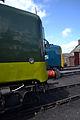 D9009, 55019 - Didcot Railway Centre (8864339176).jpg