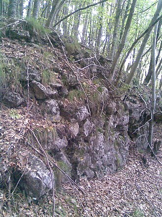 Dajti Castle - The walls of Dajti Castle in the Dajti National Park, partially covered by dense vegetation of beech forest