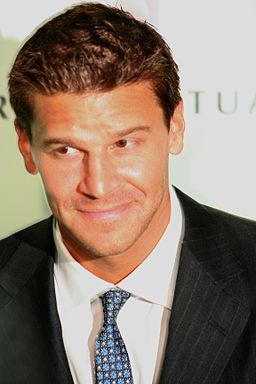 David Boreanaz May 2006 suit and tie 2