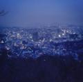 Dawn Lights.png