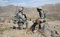 Defense.gov photo essay 090317-A-6797M-540.jpg