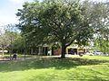 Delgado Community College Campus New Orleans April 2017 08.jpg