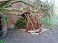 Den by Woodthorpe Grange - geograph.org.uk - 1217362.jpg