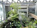Denver Botanic Gardens - DSC00963.JPG
