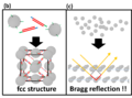 Design 10-25 構造色 DNAで架橋.png