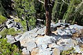 Devils Postpile National Monument-15.jpg