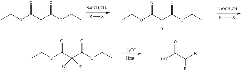 Dialkylation malonic ester synthesis mechanism.png