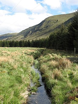 Ditch, Glen Clova - geograph.org.uk - 439160