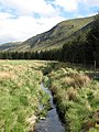 Ditch, Glen Clova - geograph.org.uk - 439160.jpg