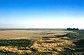 Doñana 1986 05.jpg