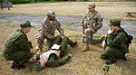 Dog Company trains for medevac in Lithuania 150709-A-FJ979-006.jpg