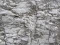Dolomite rock02.jpg