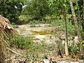 Draught pond.jpg