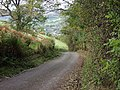 Dropping in on Llangollen - Gwernant - geograph.org.uk - 69332.jpg