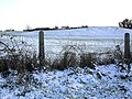 Drumbo Townland - geograph.org.uk - 1627432.jpg
