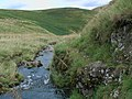Dumbhope Burn looking downstream - geograph.org.uk - 1464499.jpg
