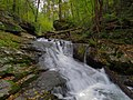 Dunnfield Creek Waterfall.jpg