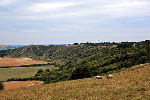 Dunstable Downs - geograph.org.uk - 1982374