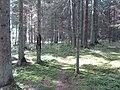 Dusetų sen., Lithuania - panoramio (118).jpg