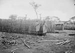 ETH-BIB-Afrikanischer Hausbau-Kilimanjaroflug 1929-30-LBS MH02-07-0025.tif