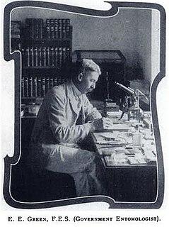 Edward Ernest Green British entomologist