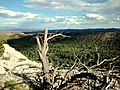East Rim Trail, Los Alamos, NM - panoramio.jpg