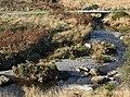 Elenydd stream joining the Afon Tywi, north of Llyn Brianne - geograph.org.uk - 1040861.jpg