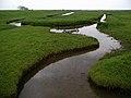 Ellerker Foreshore - geograph.org.uk - 446837.jpg