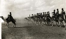 Engelse kameelruiters - English camel troopers.jpg