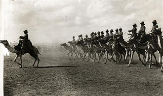 Somaliland Campaign - British camel troopers in 1913, between Berbera and Odweyne in British Somaliland.