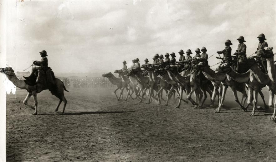 Engelse kameelruiters - English camel troopers