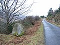 Erratic in Knockree, Co. Wicklow - geograph.org.uk - 1731932.jpg