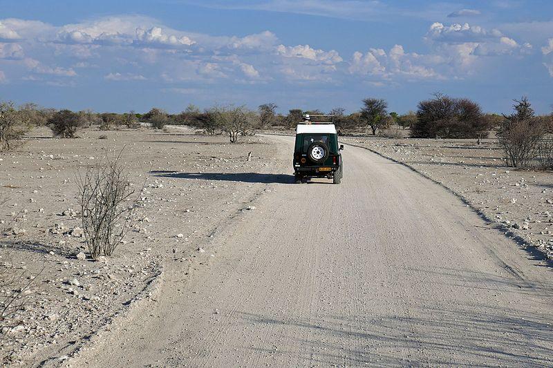 File:Etosha-Safari-photo en Land Cruiser (2).jpg