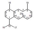 Eunicelano - Numeración.png