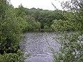 Eyeworth Pond - geograph.org.uk - 805450.jpg