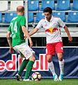 FC Liefering gegen SV Austria Lustenau(12. Mai 2017) 34.jpg