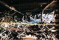 FEMA - 4436 - Photograph by Jocelyn Augustino taken on 09-13-2001 in Virginia.jpg