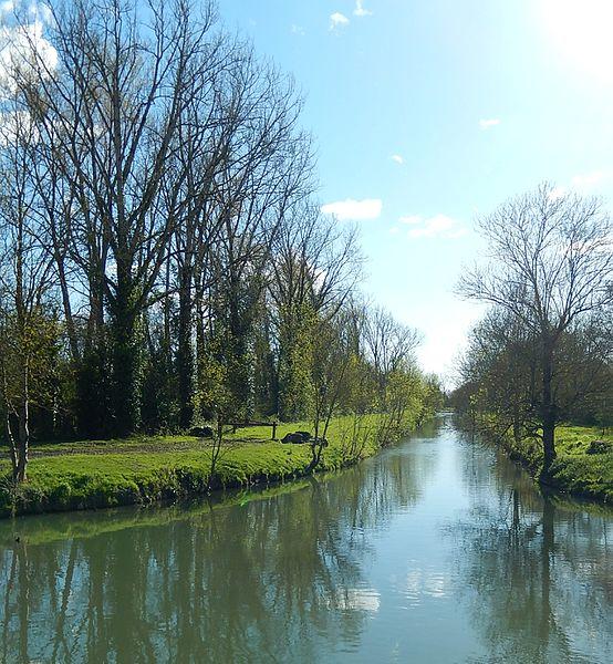 L'endroit à partir duquel la rivière Devise prend le nom de Canal de Charras, au niveau du pont de la route D112, entre les communes de Muron (à gauche) et Landrais (à droite) (Charente-Maritime, France).