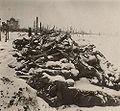 Famine in Russia 1921.jpg