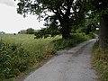 Farm road - geograph.org.uk - 199241.jpg